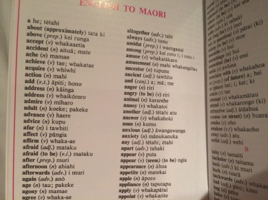 Maori phrasebook I bought